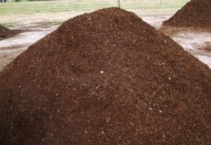 Advanced Organic Materialsneed Dirt Austin Tx